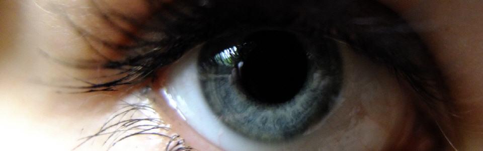 616663a24e14cab2b_eyecatcher
