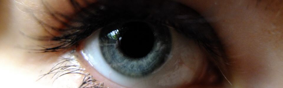dscf8019_eyecatcher
